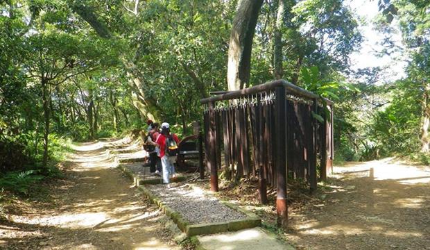 一趟可消耗 8 碗飯!台北 9 條登山步道 減肥還能遠眺 101